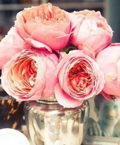 Pink Peonies | She's a Fox Inspiration