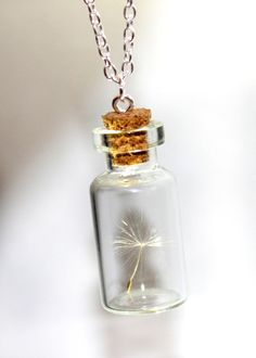 One Special Wish Dandelion Seed In a Jar by SweetyLifeShop on Etsy