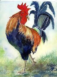 Résultats de recherche d'images pour «rooster watercolor paintings»