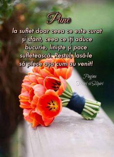 Birthday Wishes, Happy Birthday, Beautiful Flowers Wallpapers, My Notebook, Flower Wallpaper, Gods Love, Motto, Personal Development, Good Morning