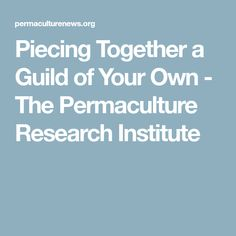 Piecing Together a Guild of Your Own - The Permaculture Research Institute
