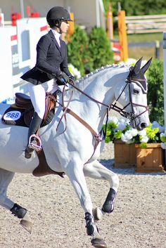 equine-ess:  ahorsecalledtimber:  IMG_7831 by laureljarvis on Flickr.  her heels!