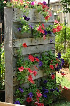 Die 19 Besten Bilder Von Garten Gutter Garden Palette Garden Und