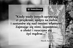 Kiedy wady innych... #Marek-Aureliusz,  #Samoakceptacja, #Samokrytyka, #Wady