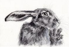 ORIGINAL format A4 dessin d'un lièvre par Animal artiste Belinda Elliott du charbon de bois