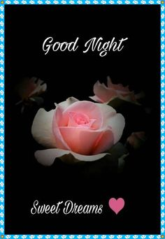 Images of good night sweet dreams - GameAFk Good Night Flowers, Good Night I Love You, Beautiful Good Night Images, Good Night Prayer, Good Night Gif, Good Night Sweet Dreams, Romantic Good Night Image, Good Evening Wishes, Good Night Wishes