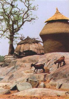 Nigeria - http://nigeria.mycityportal.net