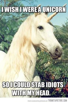 I wish I were a unicorn - funny pictures - funny photos - funny images - funny pics - funny quotes - funny animals @ humor Funny Meme Pictures, Funny Quotes, Funny Memes, Jokes, Memes Humor, Funniest Quotes, Idiot Quotes, Cat Memes, Intj Humor