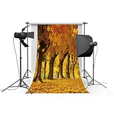 3x5ft Lfeey Designed Vinyl Thin Photography Background,Scenic Theme Golden Fall Leaves Backdrop,1(W)x1.5(H)m Customizable For Photo Studio Props -- Check out this great product.
