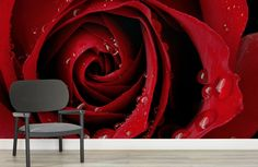 Red Rose Droplet Mural Wallpaper, custom made to suit your wall size by the UK's for wall murals. Custom design service and express delivery available. Design Seeds, Rose Wallpaper, Wall Wallpaper, Ipad Rose, Doodle Artist, Easy Healthy Dinners, Healthy Recipes, Dark Red Roses, Gif Disney