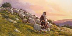 Ovelhas seguindo um pastor numa colina