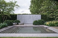 RHS Chelsea. Water feature. Andrew Ewing