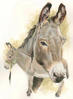 Barbara Keith - Donkey