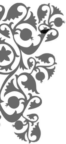 ornaments.png (223×480)