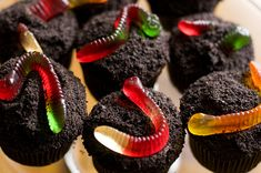 G can't decide between cupcakes and dirt cups for his tractor themed birthday party....now he won't have to! Woohoo!