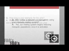 BugCo Pest Control FAQs