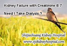 I am a kidney failure patient, before my creatinine level up to 8.7 the doctors once recommended me to take dialysis and i refused, because i feel everything is in fit condition. But now more and more symptoms appeared one by one, is that means i have to take dialysis ? What will happen if i refuse to take dialysis ?