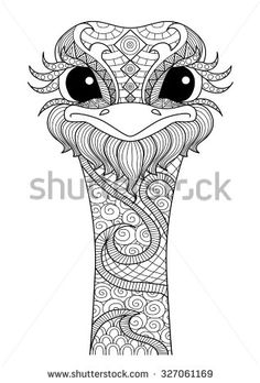 Hand drawn zentangle ostrich for coloring page,logo, t shirt design effect and tattoo - stock vector