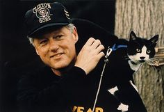 Many celebrities are known for their penchant for cats. Below are 15 pictures of some of the celebrities and their cats, often with interesting and sometimes surprising facts about these celebs, and their love for our feline friends. Cool Cats, I Love Cats, Crazy Cat Lady, Crazy Cats, Celebrities With Cats, Celebs, Men With Cats, Gatos Cool, Image Chat