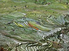 Edward Burtynksy's Environmental Photography | Trendland: Design Blog & Trend Magazine