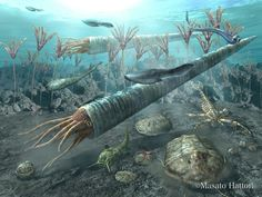 Ordoviciano periodo seguente al Cambriano. In foto: Cameroceras, Astraspis, Trilobiti e Scorpione di mare.
