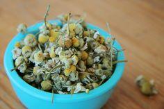 Sugarapple Nestchen f/ür Beistellbetten Bettumrandung 150 x 25 cm dick gepolsterter Kopfschutz und Gitterschutz f/ür Baby Beistellbetten Pflanzen Druck