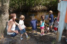 We had Alistair's 5th birthday party at Weedon Island Preserve and it was so much fun!