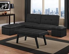 Futon Couch - The futon is pretty basic and looks like a covered mattress even when in the sitting position