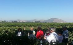 Discovering Wines and Traditions of Argentina and Chile - photo by Claudio Le Roy