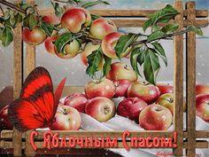 Поздравляю с яблочным Спасом! - Яблочный Спас 2017