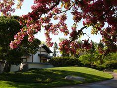 Nikka Yuko Japanese Garden : Lethbridge, Alberta. Visit http://najga.org/gardens for map location.