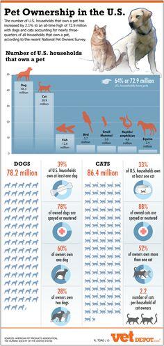 49 Amazing Dog Owner Demographics