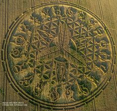 """""""The massive crop circle is a humongous figure that occupies two acres of land and features a number of mysterious symbols that according to researchers are TWENTY astrological symbols adorning its edges."""" Crop circles have always been. Crop Circles, Aliens And Ufos, Ancient Aliens, Ancient History, Ancient Mysteries, Ancient Artifacts, Crop Circle Connector, Ancient Egyptian Art, Ancient Greece"""