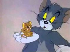 There is nothing funnier than a cat screaming like a man. :-D lol  tom and jerry - scream compilation 1