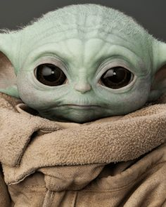 The Child Wookieepedia Fandom Yoda Gif, Yoda Meme, Yoda Funny, Yoda Pictures, Yoda Images, Images Star Wars, Star Wars Pictures, Cuadros Star Wars, Desenhos Harry Potter