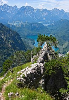 Summer in the Bavarian Alps, Germany