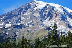 Clear view across a meadow of snow covered Mount Rainer, near Seattle, Washington, USA.