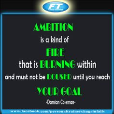 Ambition is a kind of fire that is burning within and must not be doused until you reach your goal - Damian Coleman