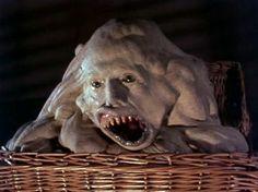 """25 Awesomely Insane """"B Movie"""" Horror Flicks - The Gingerdead Man ..."""