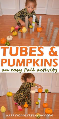 Tubes & Pumpkins - HAPPY TODDLER PLAYTIME This is the easiest Fall STEM activity ever! All you need is cardboard tubes and mini pumpkins and seasonal gourds! Fall Activities For Toddlers, Stem Activities, Infant Activities, Halloween Preschool Activities, Fall Art For Toddlers, Fall Crafts For Toddlers, Thanksgiving Activities For Kids, 3 Kids, Toddler Learning
