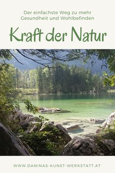 Mountains, Nature, Travel, Health And Wellbeing, Recovery, Woodland Forest, Lawn And Garden, Naturaleza, Viajes