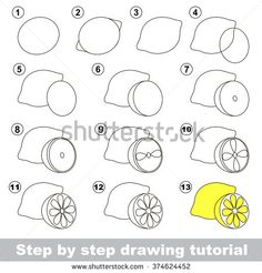 Drawing tutorial. How to draw a Lemon - stock vector