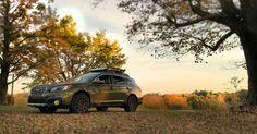 Subaru Outback 3.6R Autumn