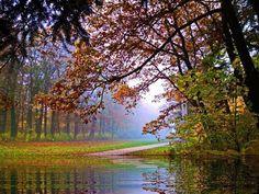 Осень туманная