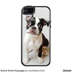 Boston Terrier dog puppy. OtterBox iPhone 5/5s/SE Case