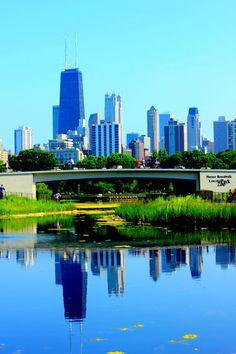 Lincoln park Zoo Chicago, IL