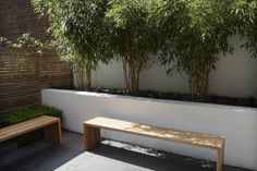 Modern, minimal, neutral materials with formal planting Wall planting ideas Garden Design London, London Garden, Architecture Courtyard, Landscape Architecture, Lake Garden, Garden Yard Ideas, Garden Landscaping, Outdoor Living, Outdoor Decor