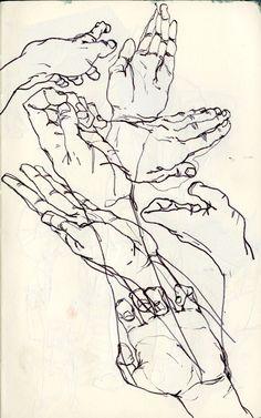 anatomy, hands