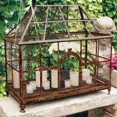 I'm keen on this unique greenhouse home Rustic Decor, Farmhouse Decor, Olive And Cocoa, Bird House Kits, Rat House, Small Greenhouse, Greenhouse Ideas, How To Make Terrariums, Hawaii Homes