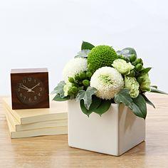 【ネット限定】白とグリーンのピンポンマムのアレンジ¥3990